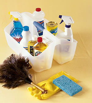p_cleaning_caddy