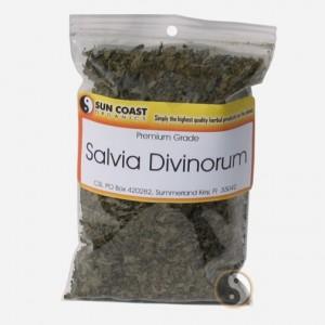Salvia in a bag