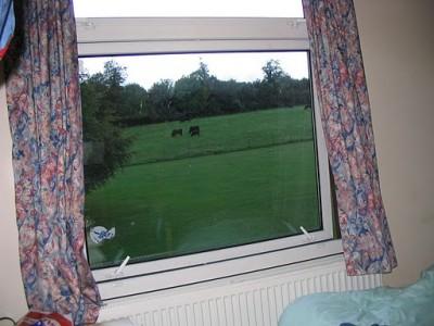dorm window