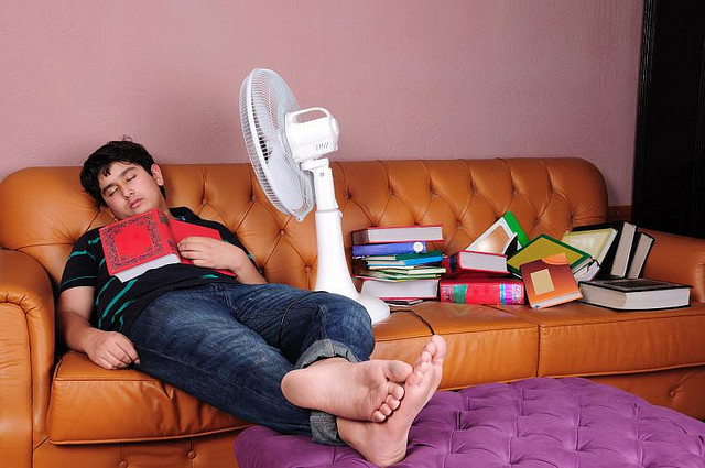 Studying Sleeping on Couch