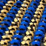 College Graduation | Photo Pin